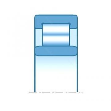 32,000 mm x 68,000 mm x 30,000 mm  NTN R06B13 Rolamentos cilíndricos