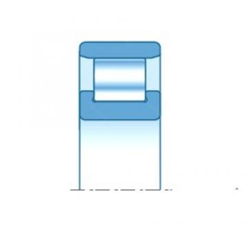 30,000 mm x 72,000 mm x 19,000 mm  NTN N306E Rolamentos cilíndricos